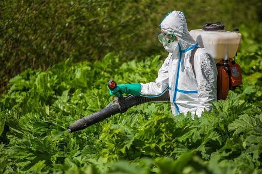 гербицидная обработка москва
