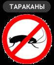 Какая отрава от тараканов лучше: проводим сравнение