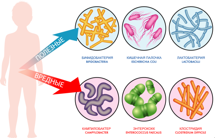 Как можно поймать микроба