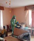 Подготовка квартиры к дезинсекции от клопов