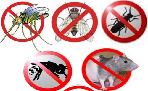 Дезинсекция - истребление насекомых