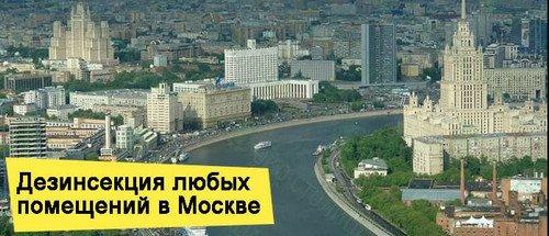 Служба СЭС в Москве и МО