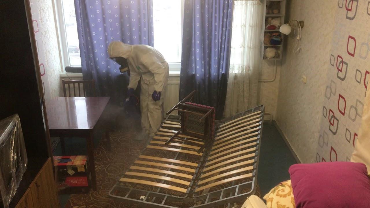 обработка квартиры от клопов в москве цена