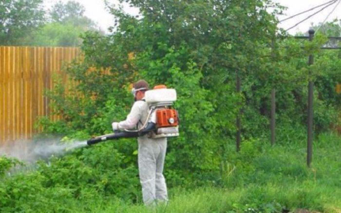 дезинфекция участка от комаров цена