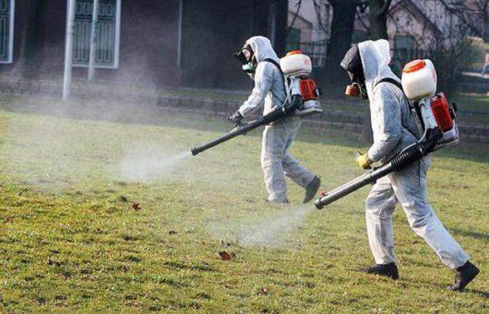 обработка участка от комаров заказать в москве